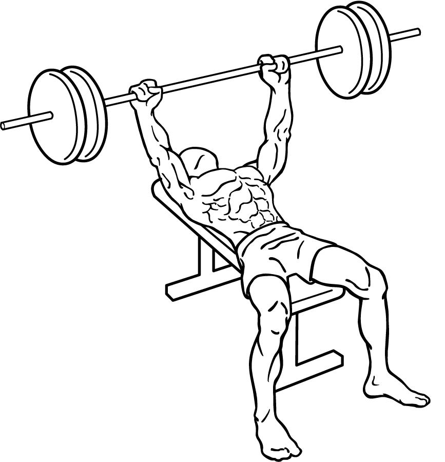 867x900 Bench Press Exercise