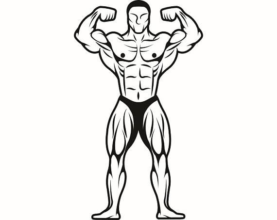 570x454 Bodybuilder