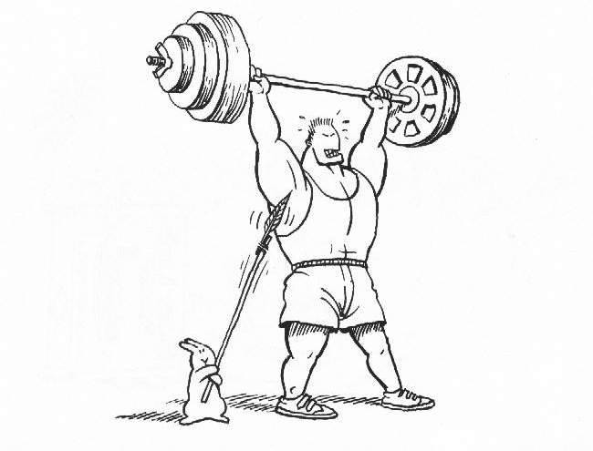 650x495 Funny Weight Lifter Drawing Images, Pictures, Photos, Quotes And Funny