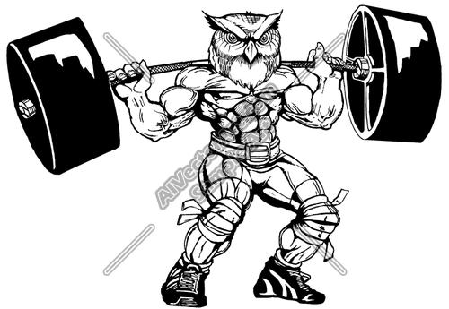 500x345 Weight Lifter Owl Clipart And Vectorart Sports Mascots