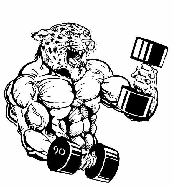587x636 Large Leopard Weightlifter.jpg