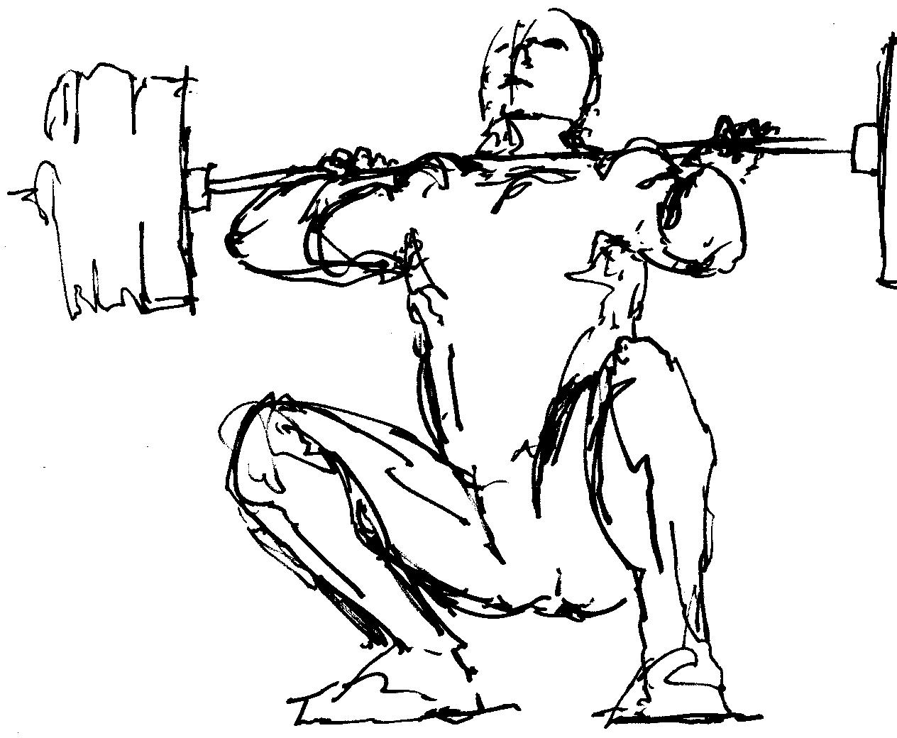 1264x1040 Weightlifting Drawings Images Amp Pictures