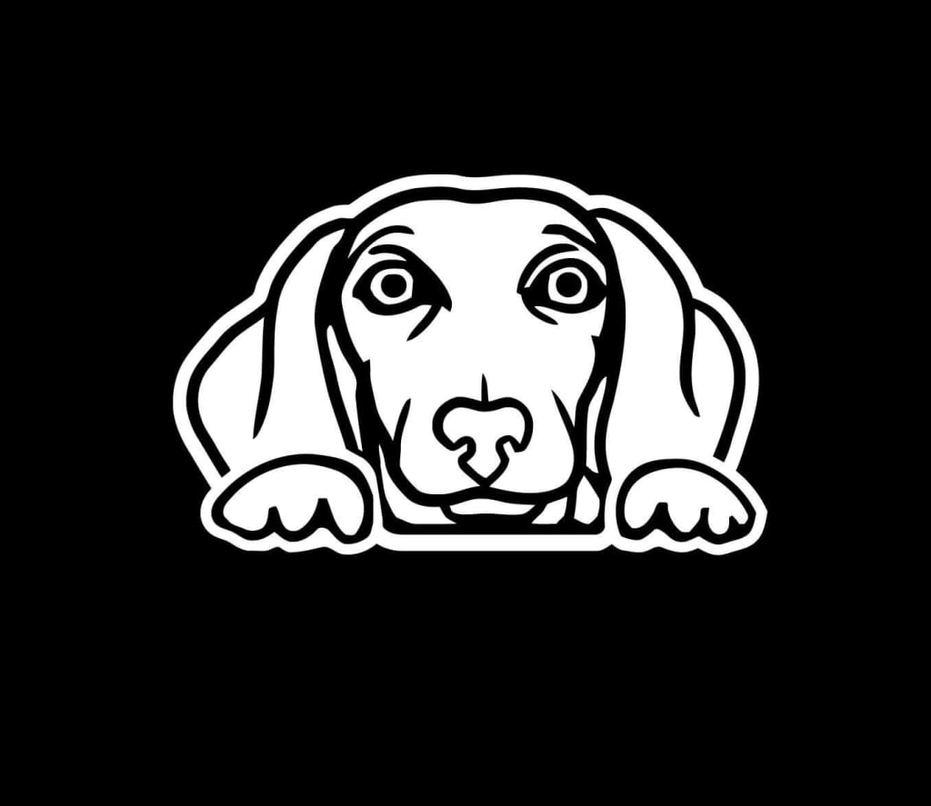 1024x887 Dachshund Weiner Dog Peeking Decal Sticker Custom Sticker Shop