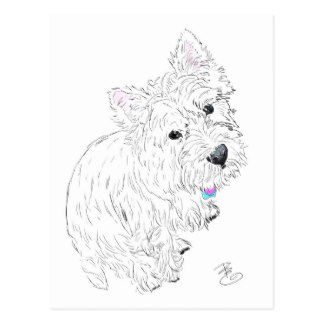324x324 West Highland White Terrier Drawing Cards