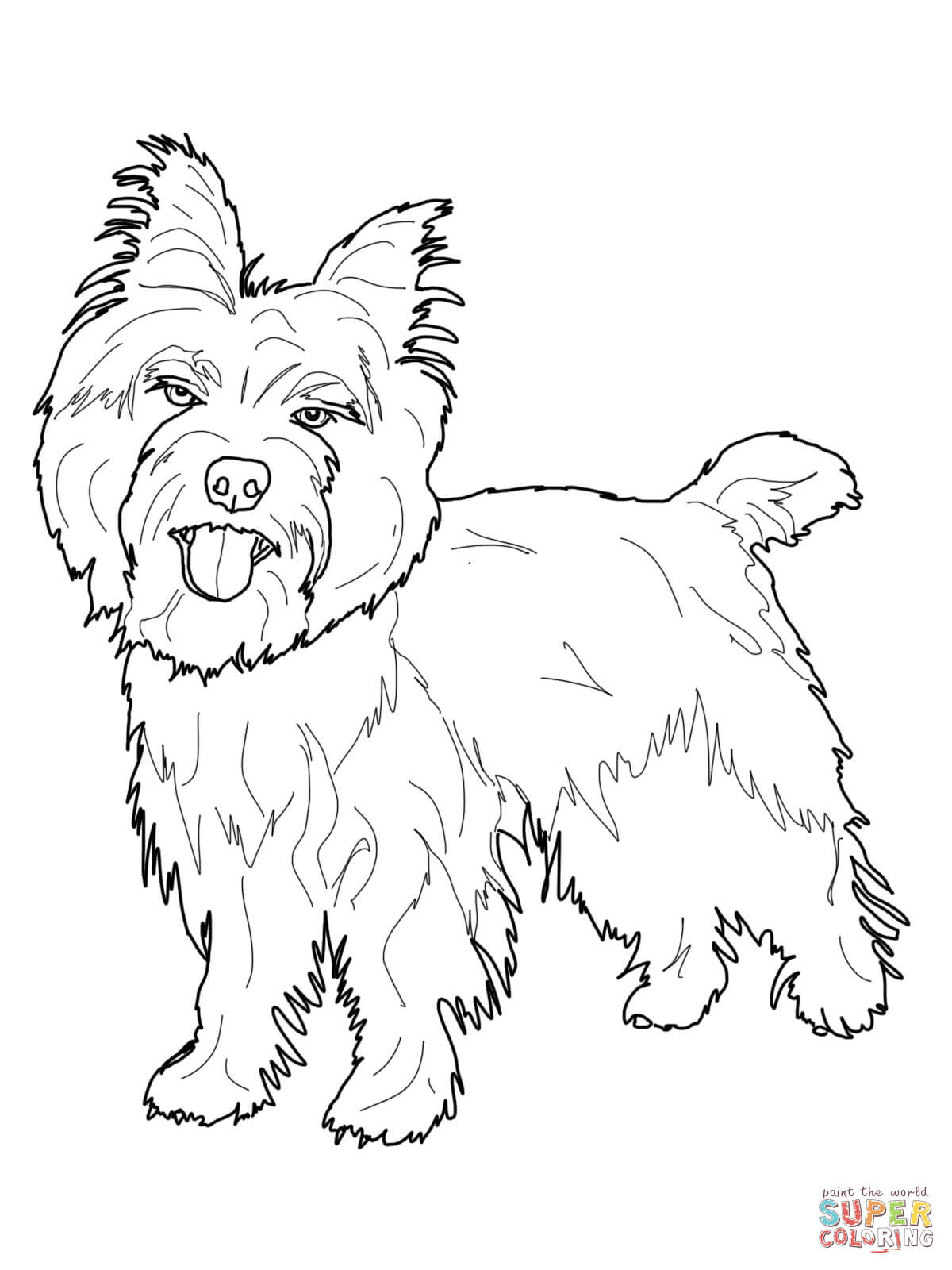 1200x1600 Cairn Terrier Coloring Page Free Printable Coloring Pages