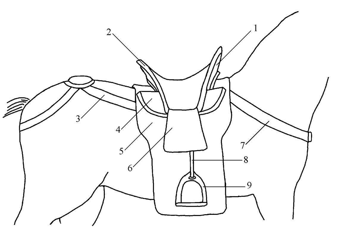 western saddle drawing at getdrawings com