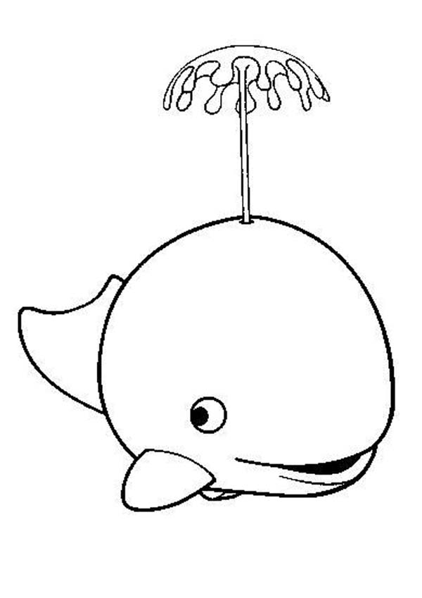 600x849 A Killer Whale Spouting Water Coloring Page