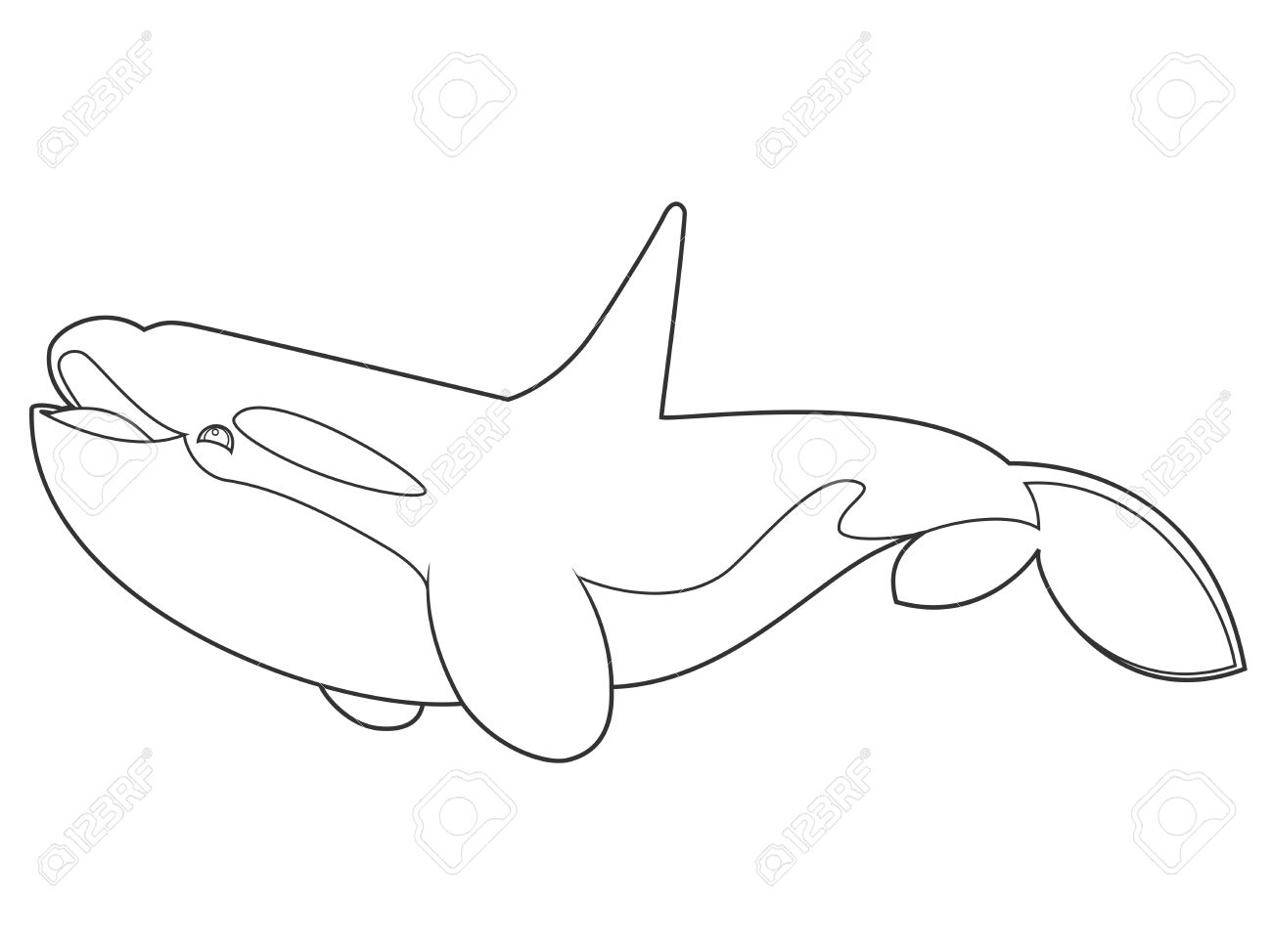 1300x974 Illustration Of A Killer Whale On White Background With Black