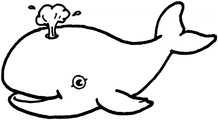 700x386 whale outline whale outline cliparts free download clip art free - Whale Outline
