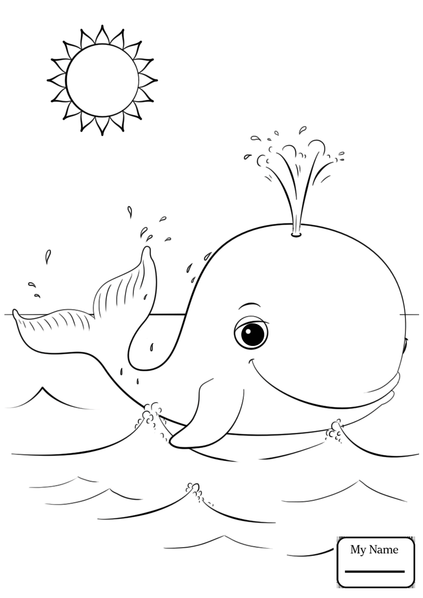 866x1224 Cartoon Whale Mammals Whale Outline Coloring Pages