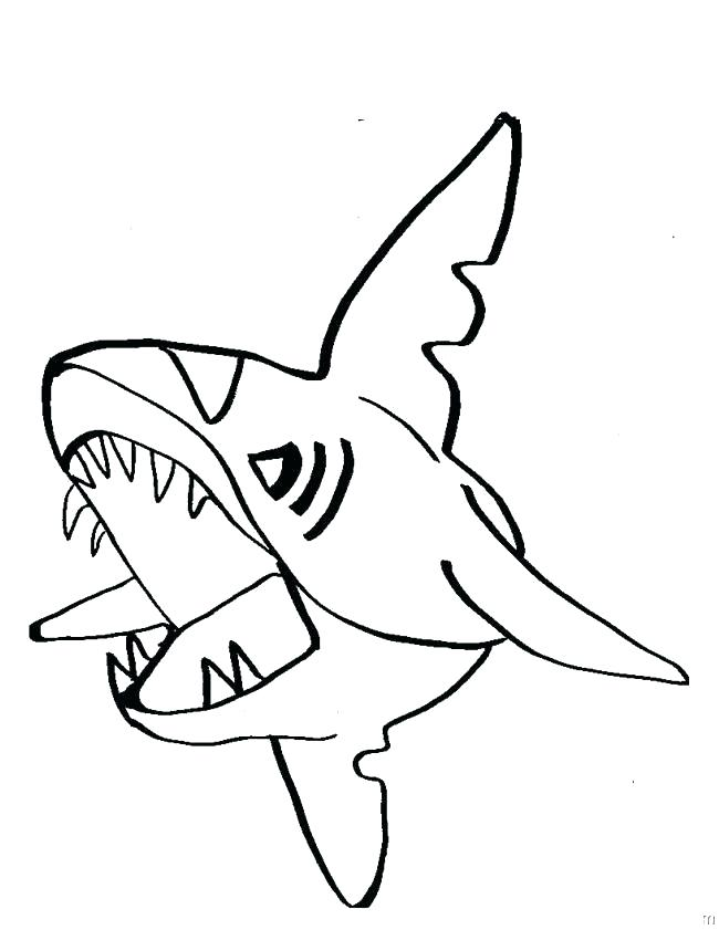 650x841 Best Of Shark Coloring Pages Images Great White Shark Coloring