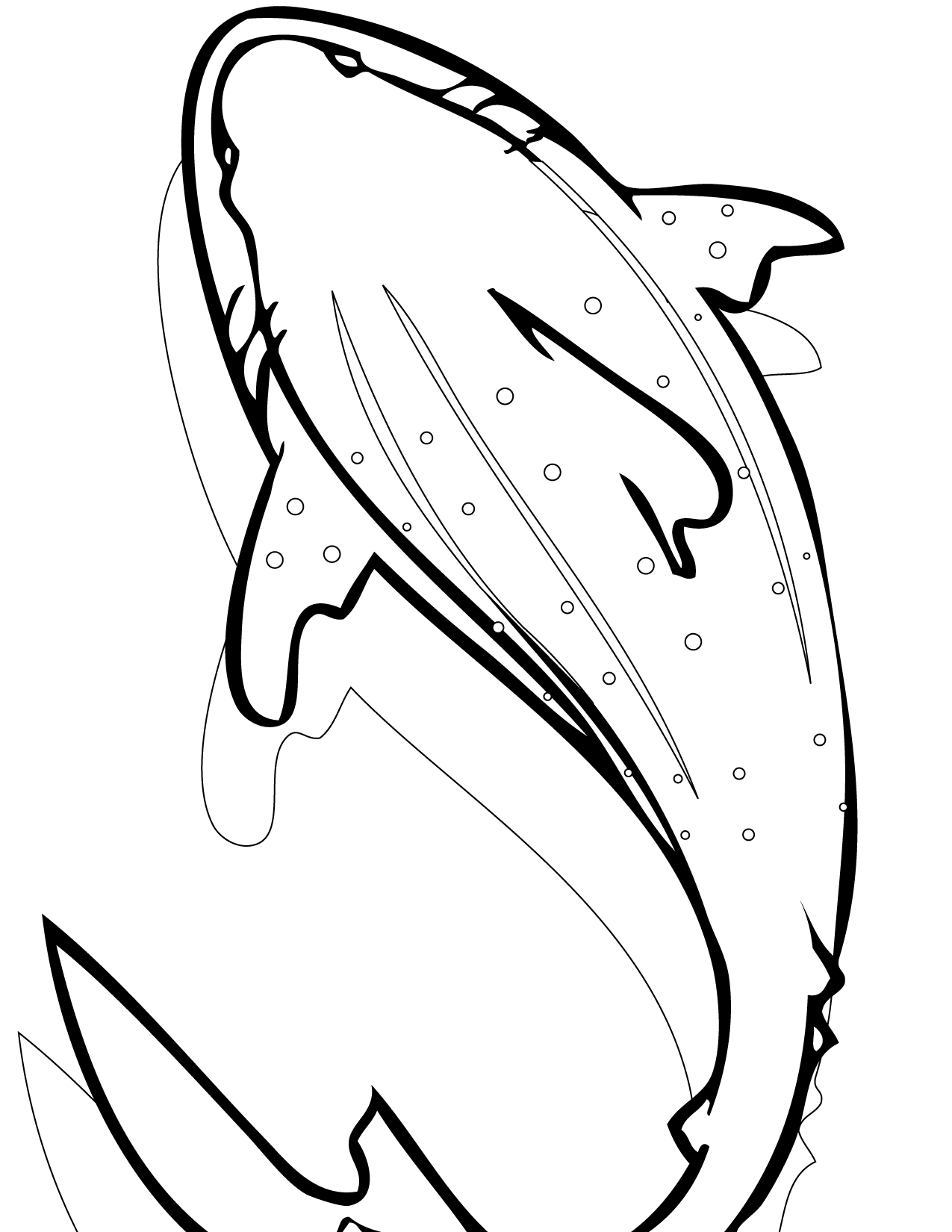 1275x1650 Whale Shark Coloring Page