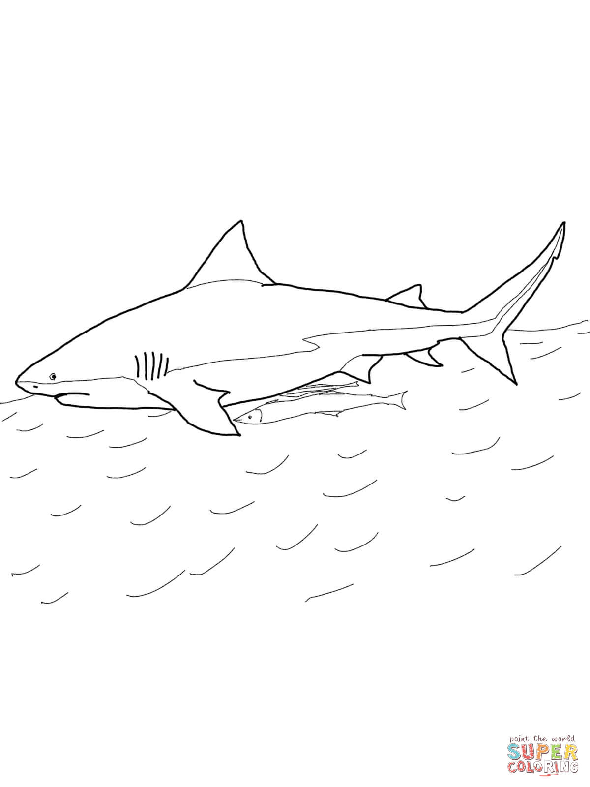 1200x1600 Bull Shark Coloring Page Free Printable Coloring Pages