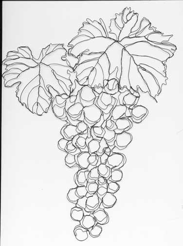376x504 Wire Botanicals Wire Sculpture And Illustration