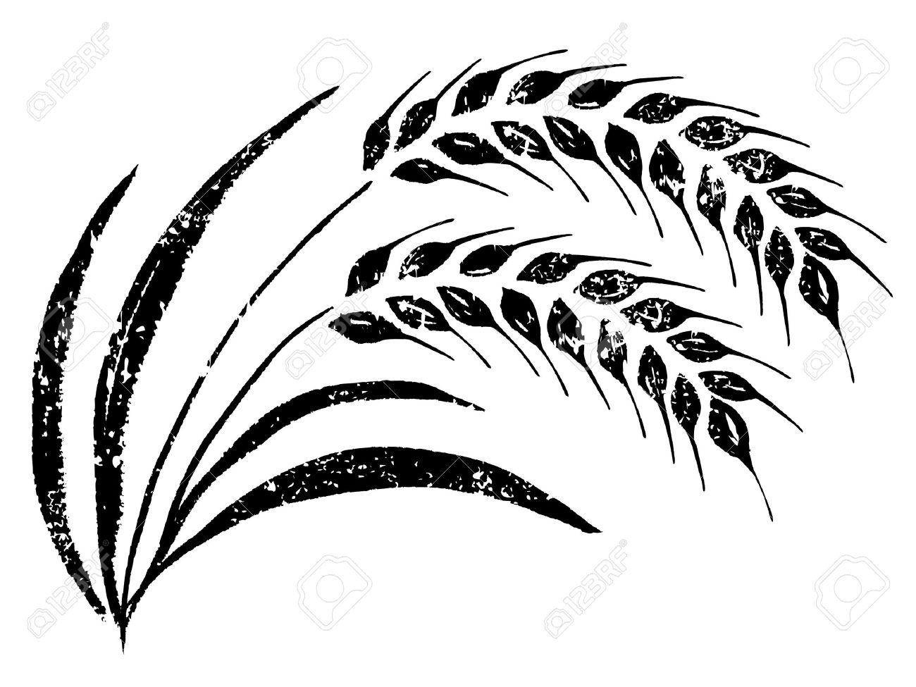 Line Drawing Feather : Wheat drawing at getdrawings free for personal use