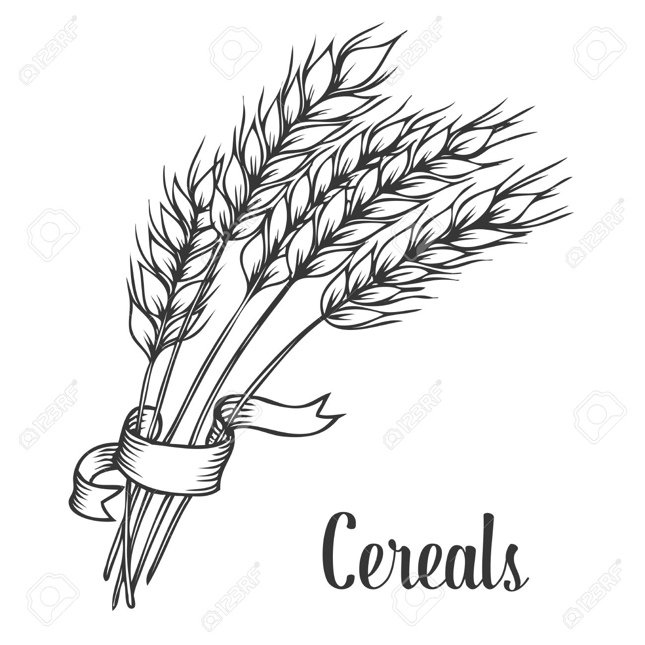 1300x1300 Wheat Bread Ears Cereal Crop With Ribbon Sketch Decorative Icons