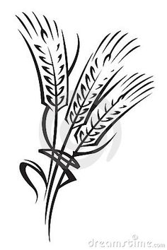 236x354 Drawings Of Wheat Stalks Black And White Drawing Of Two Stalks
