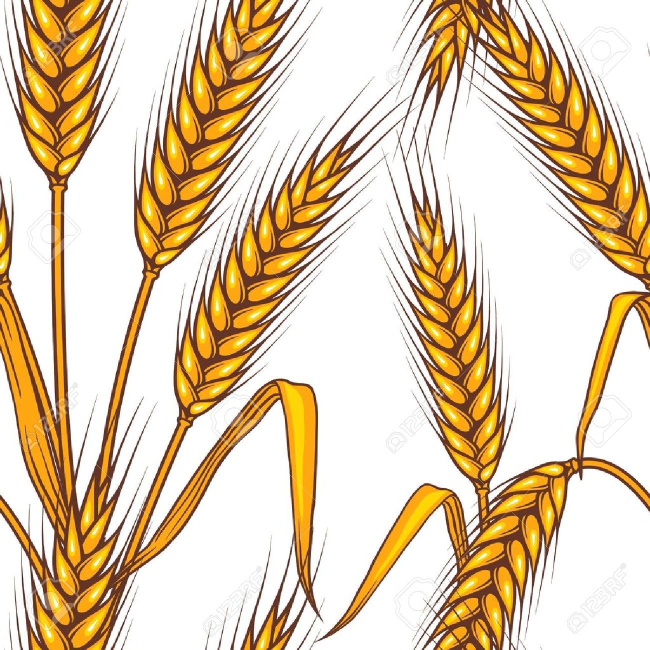 Wheat Field Drawing