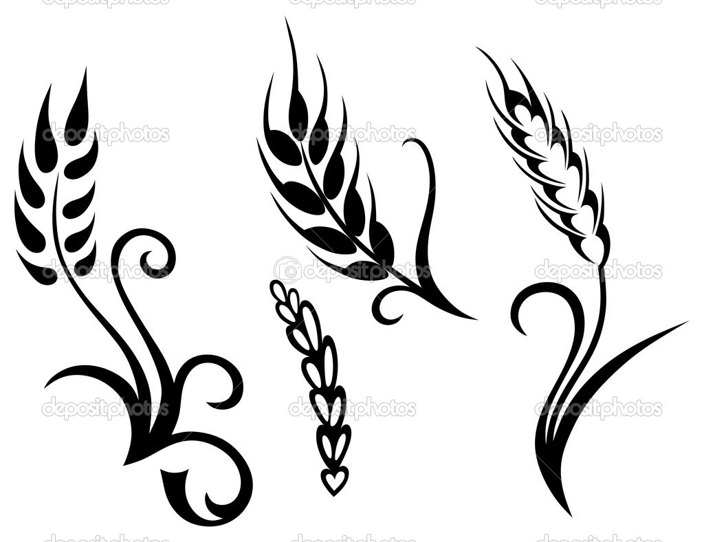 1024x788 Non Copyrighted Drawings Wheat And Rye Stock Vector Kreativ