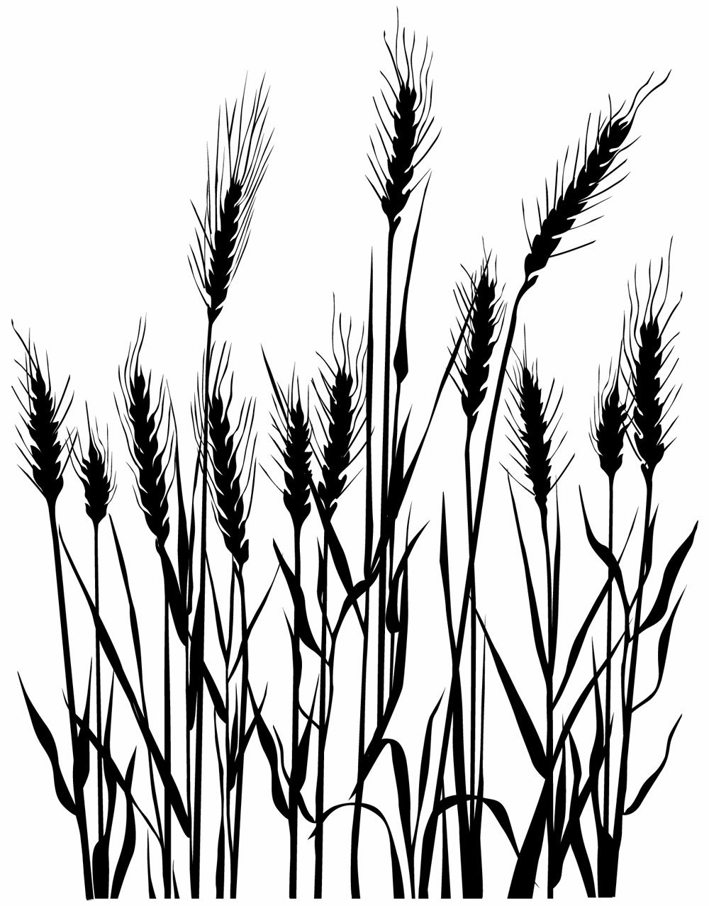 1000x1278 Hero Arts Woodblock Stamp Silhouette Grass Arts