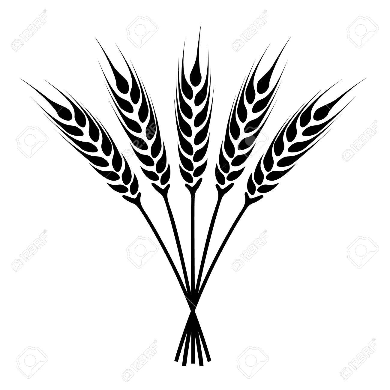 1300x1300 Silhouette Ears Of Wheat Icon. Crop Symbol Isolated On White