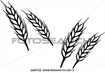 450x313 Wheat Harvest Black And White Clipart