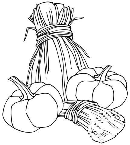 430x480 Wheat Sheaves And Pumpkins Coloring Page Free Printable Coloring