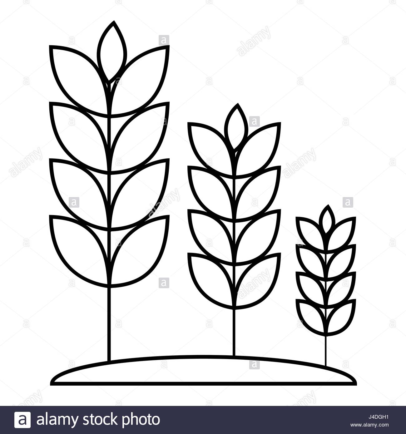1300x1390 Wheat Germ Icon, Outline Style Stock Vector Art Amp Illustration