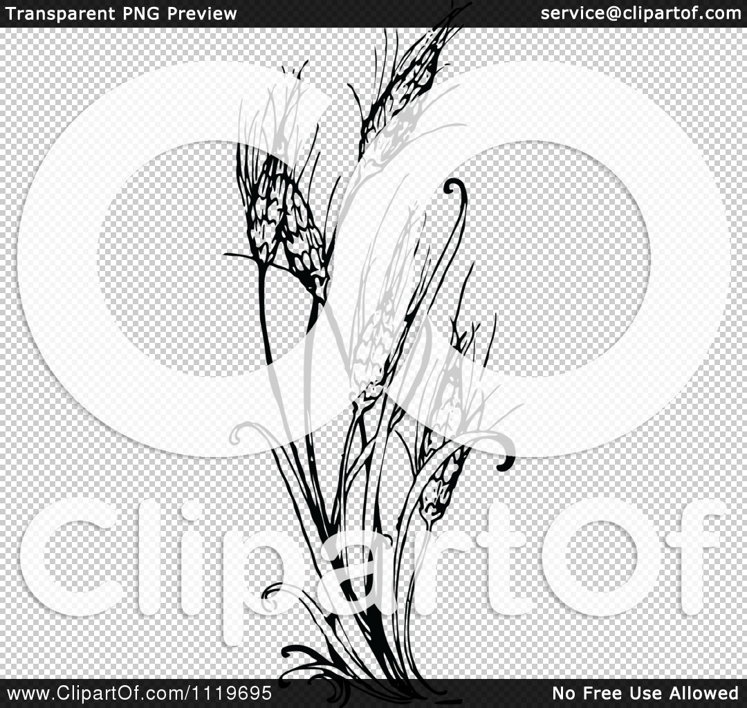 1080x1024 Clipart Of A Retro Vintage Black And White Wheat Plant
