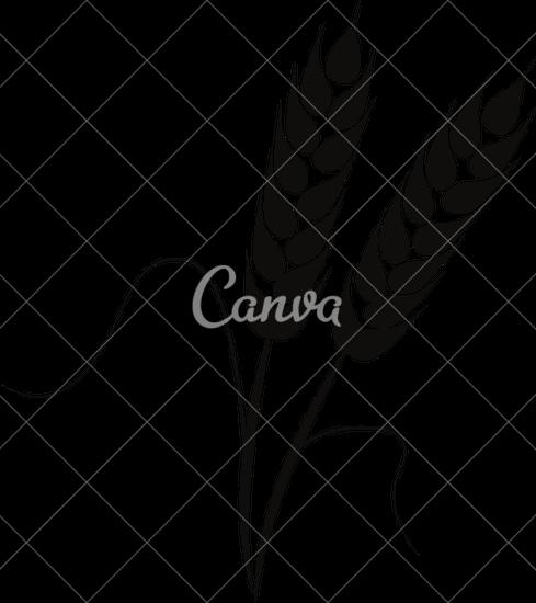 489x550 Illustration Of Wheat Ears