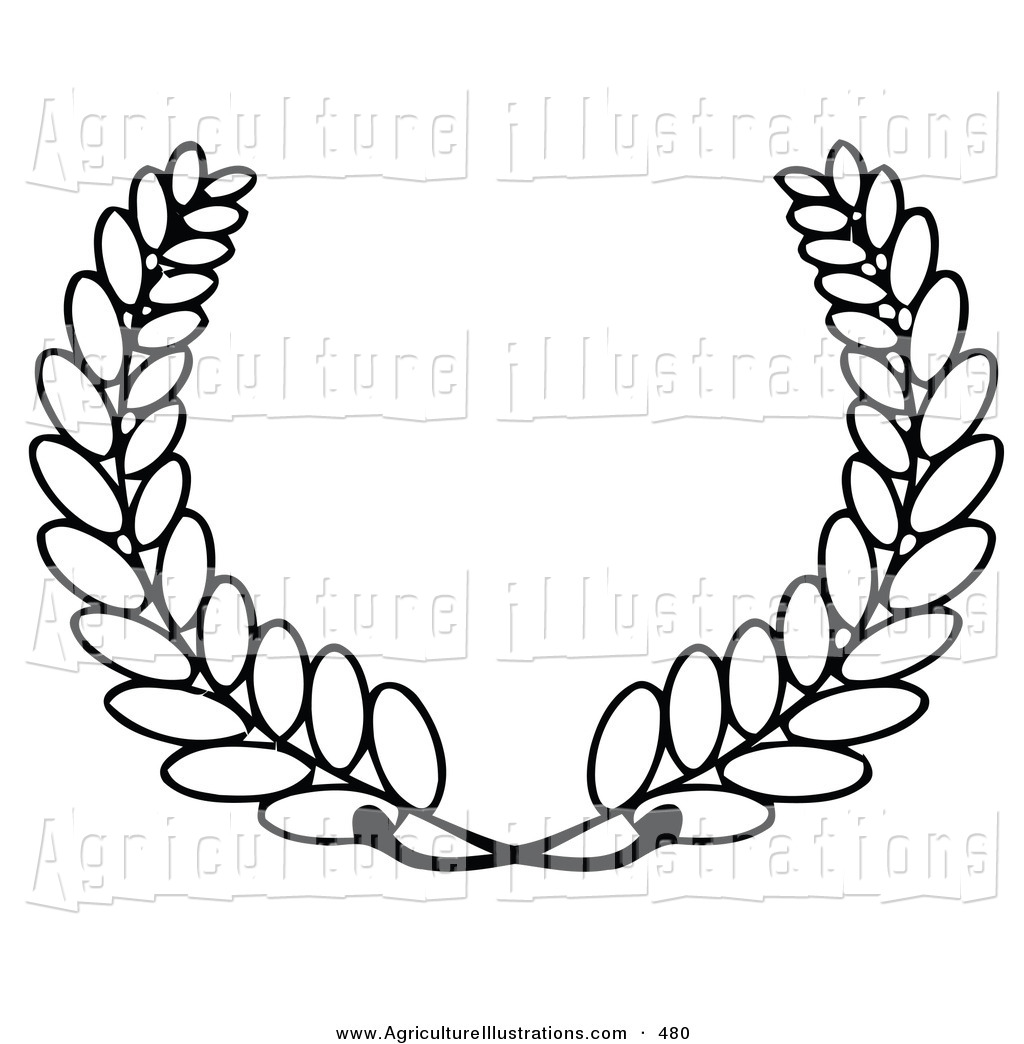 1024x1044 Royalty Free Wheat Stock Agriculture Designs