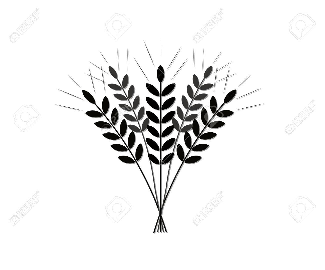 1300x1083 Silhouette (Icon) Of The Crop Of Agriculture (Grain Of Wheat