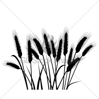 325x325 Vector Colorful Wheat Ears Gl Stock Images