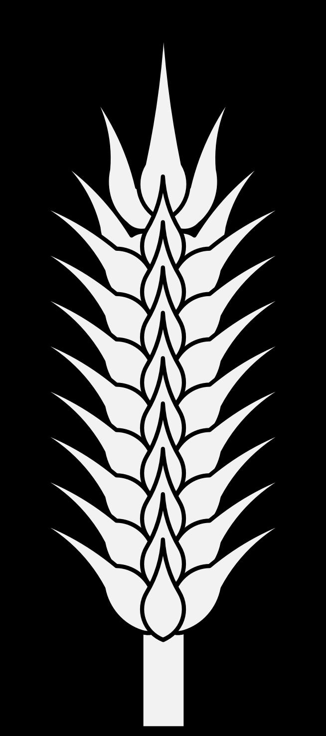 654x1476 Wheat