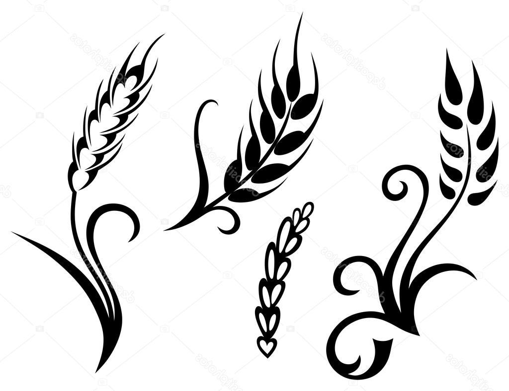 Line Drawing Grass : Wheat plant drawing at getdrawings free for personal use