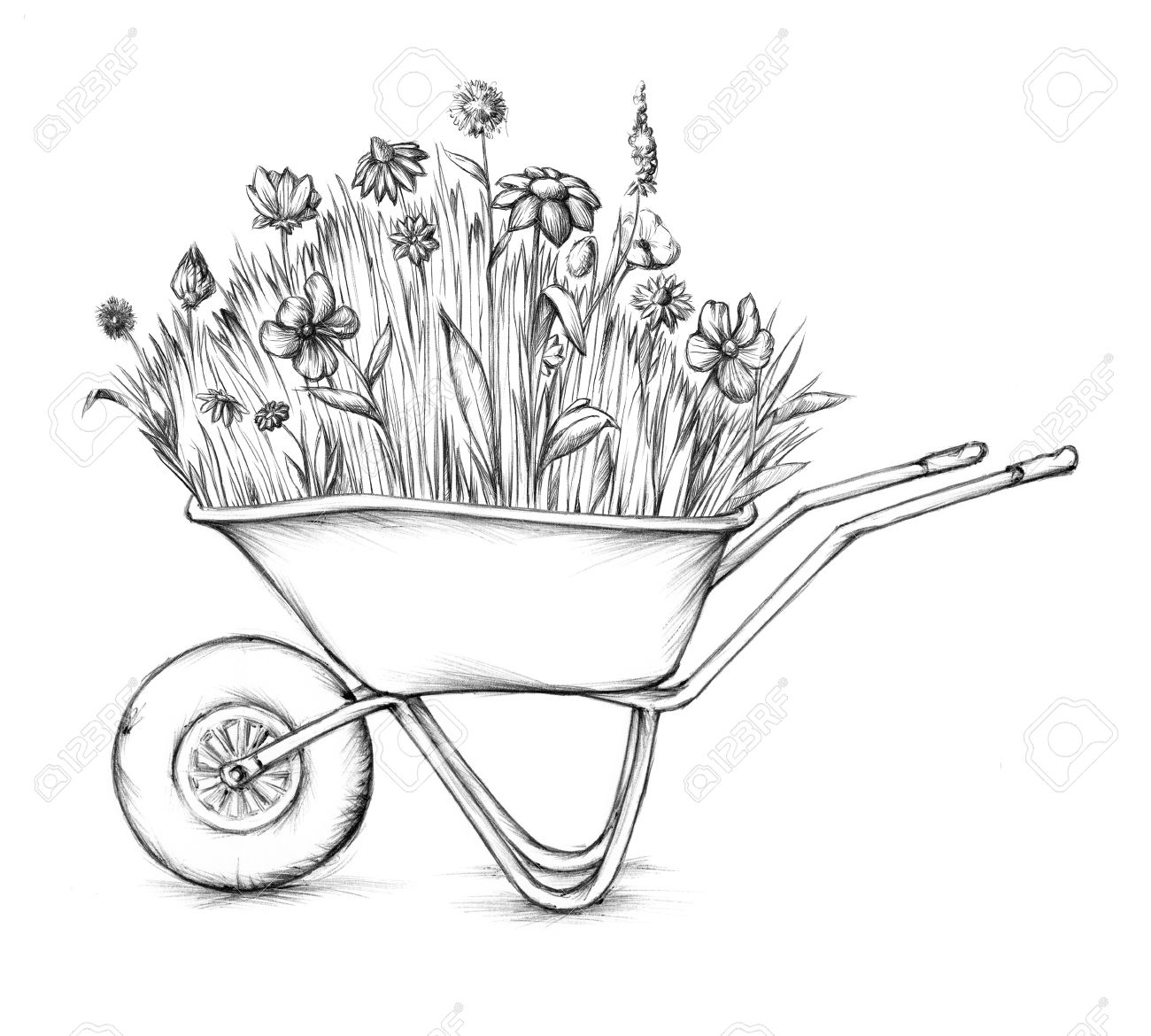 1300x1170 Illustration Of A Flower Meadow In A Wheelbarrow Stock Photo