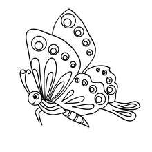 220x220 Black And White Butterfly Coloring Pages