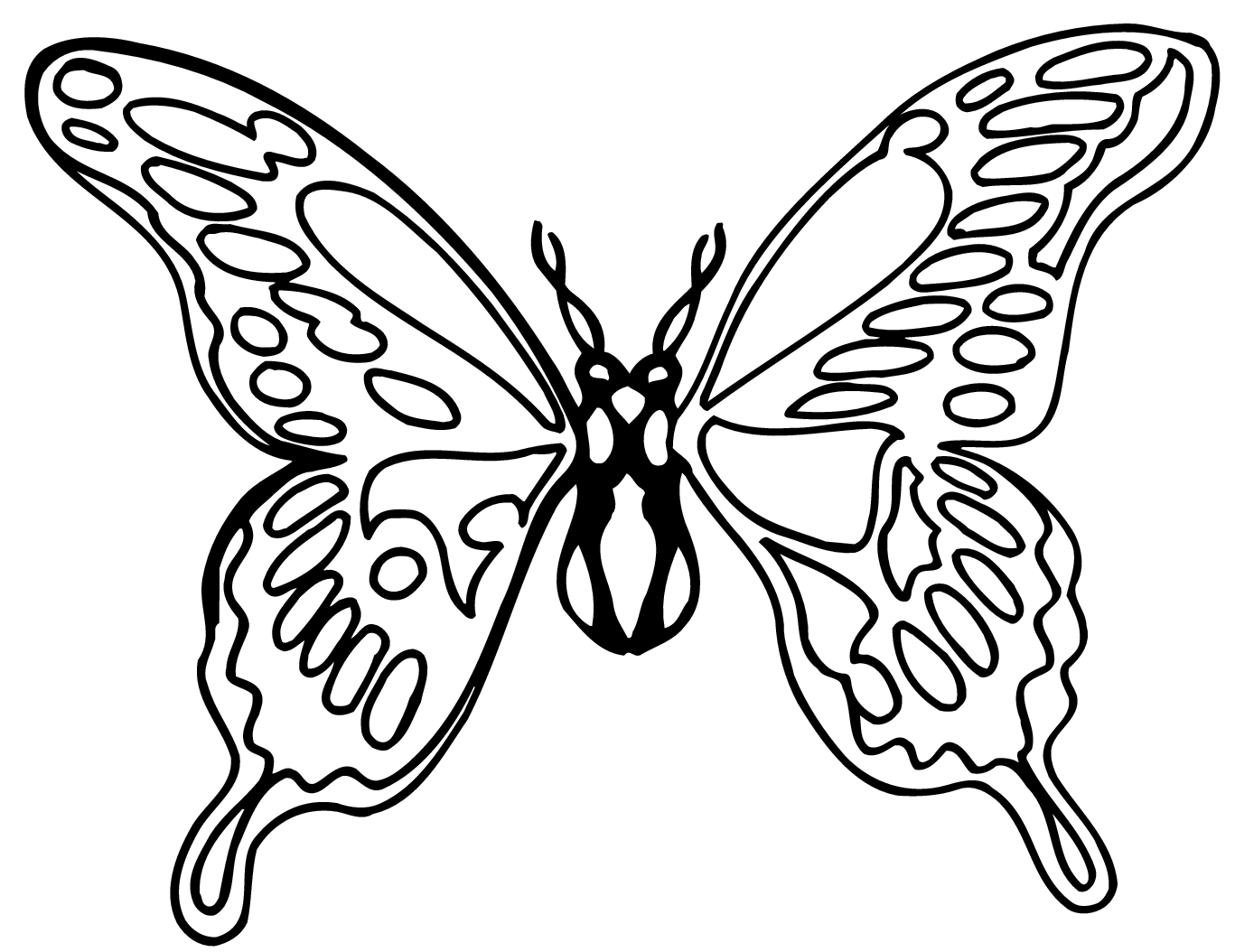 1367x1054 Flower Butterfly Black And White Drawing How To Draw A Butterfly