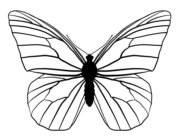 600x469 Best Photos Of Monarch Butterfly Template