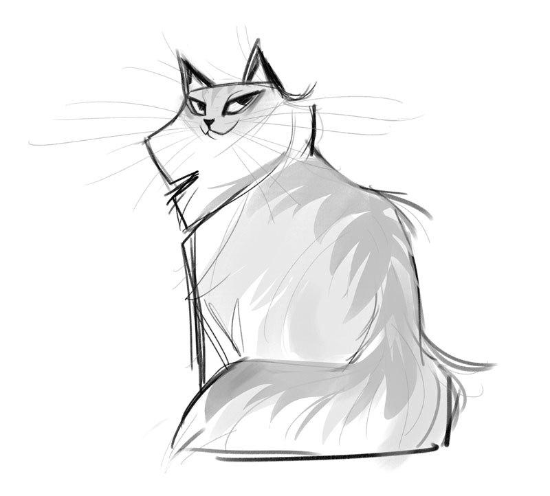800x722 Daily Cat Drawings