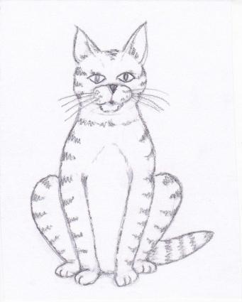 341x425 How To Draw A Cat Lovetoknow