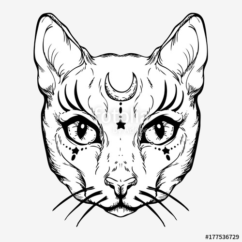 500x500 Pagan Magical White Cat With The Symbol Of The Moon. Gothic