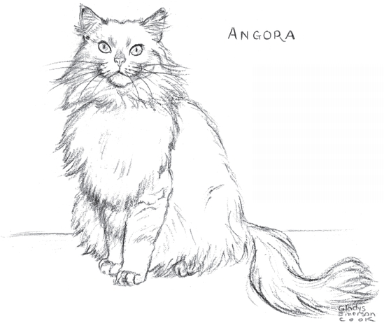 549x462 You Can Draw Cats