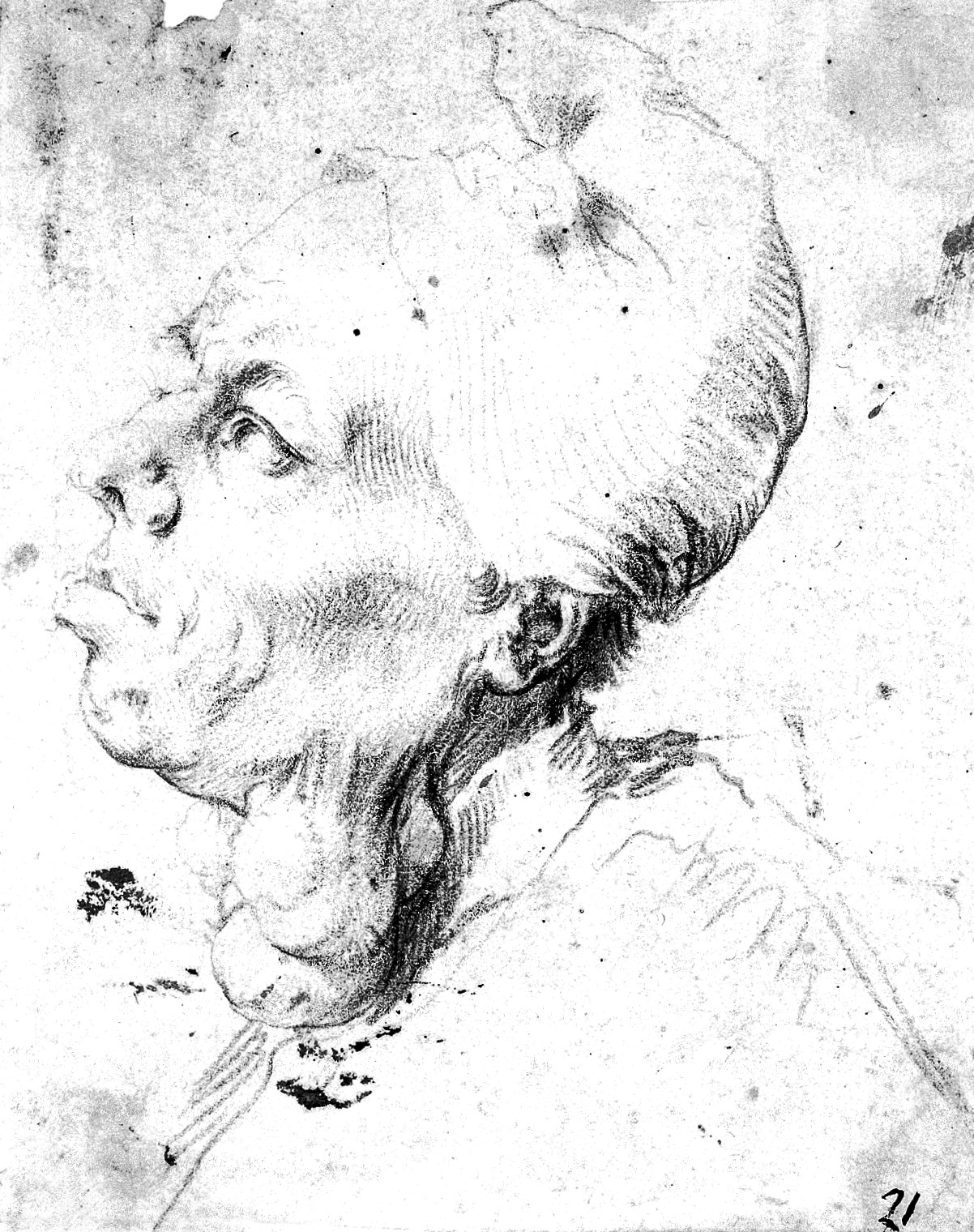 1202x1520 Filea Man With Goitre. Red Chalk Drawing By Or After J. Ribera