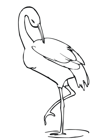 360x480 Crane Stands On One Leg Coloring Page Free Printable Coloring Pages