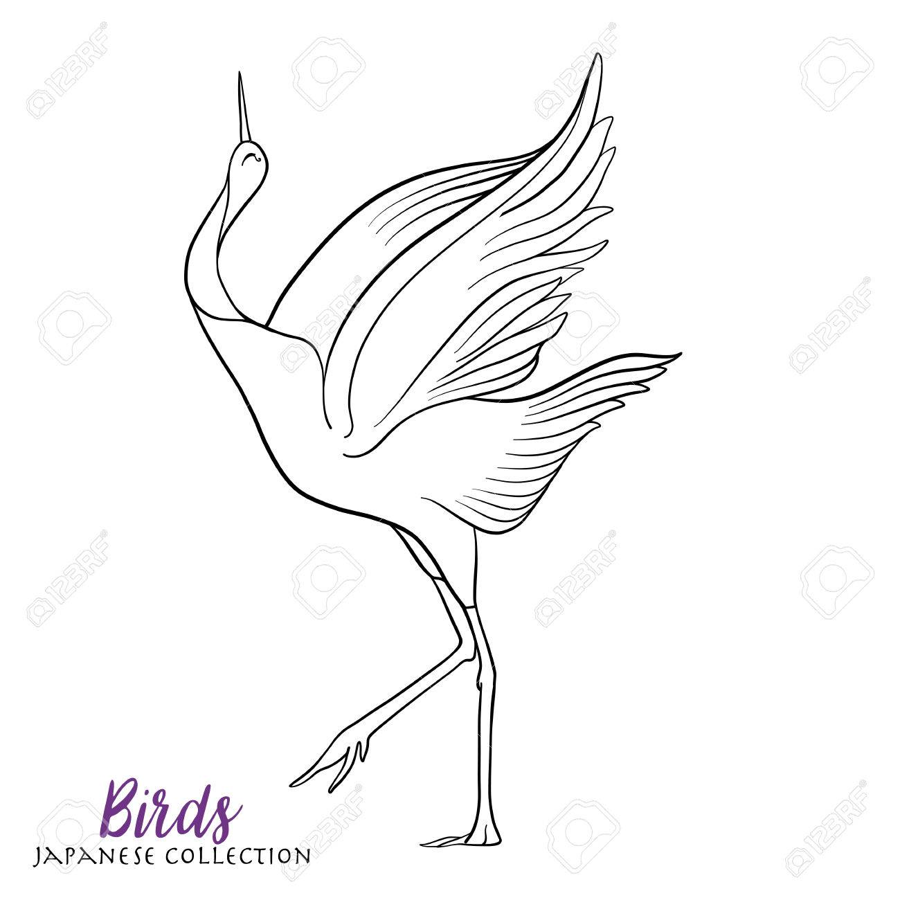1300x1300 Japanese Crane. Coloring Book For Adult. Outline Drawing Coloring