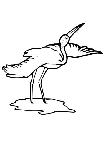 360x480 Whooping Crane Bird Coloring Page Free Printable Coloring Pages