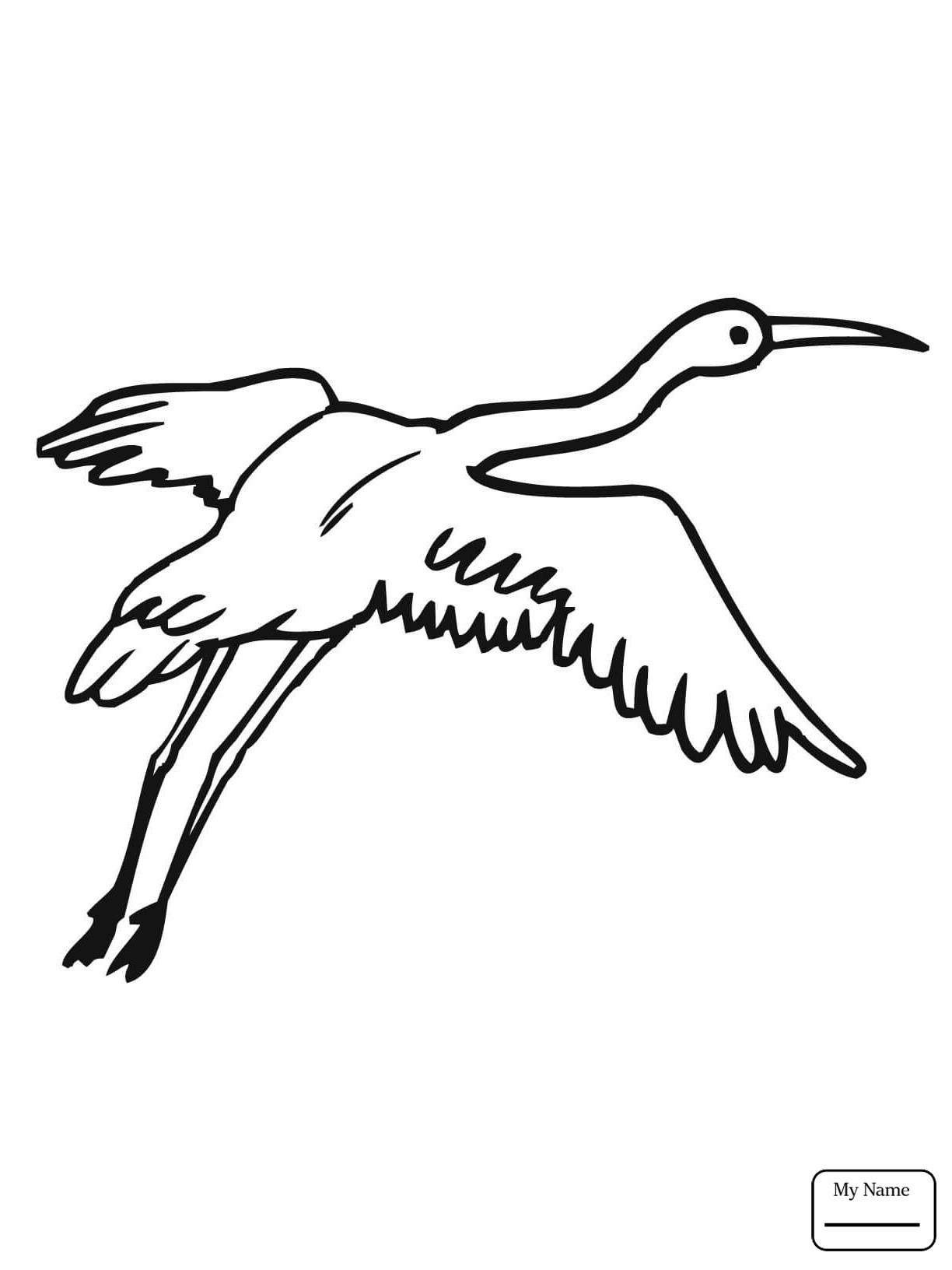 1224x1632 Crane Tx Animal Control Free Draw To Color
