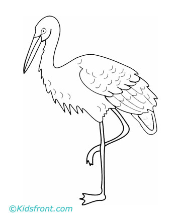 360x440 Crane Animal Coloring Pages Crane Coloring Pages For Kids