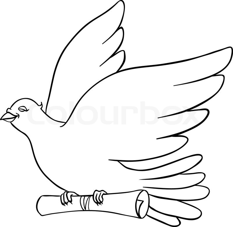 800x779 White Dove With A Message On A White Background Stock Vector